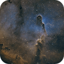 IC1396,                                astrowill
