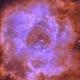 NGC2238 Rosette,                                Michel