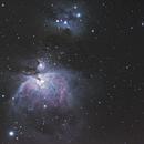 M42,                                toxik