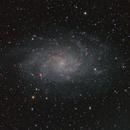 M33,                                Christoph Zechner