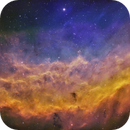 NGC 1499 California Nebula SHO,                                Randy Lindstrom