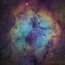 IC 1396,                                Sung-Joon Park