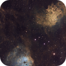 Tadpoles & The Flaming Star  - IC410+IC405 in SHO,                                Arun H.