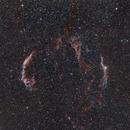 Cygnus Loop,                                Patryk