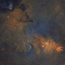 NGC 2264 and area,                                Komet