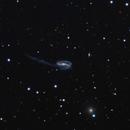 Arp 188, The Tadpole Galaxy,                                Frank Zoltowski