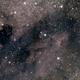 Pelican Nebula,                                Fabio Pignata