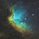 Wizard Nebula NGC 7380,                                Alex Gorbachev