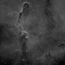 Elephant's Trunk nebula - IC1396 - Ha,                                Thomas Richter