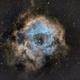 NGC2238  Rosette Nebula,                                Edward Overstreet