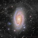 M81 and IFN (Jim & Linda Powell data),                                Rick Stevenson