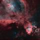 Space Guppy,                                Andrew Barton