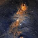 Fox Fur Nebula, Cone Nebula, Christmas Tree Cluster.  NGC2264,                                Chris Parfett @astro_addiction