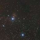 Horsehead and Flame Nebulas,                                JDJ