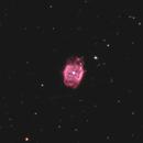 NGC 40,                                Carsten Dosche