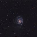 M101 Pinwheel Galaxy,                                Aaron