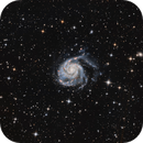 M101 Pinwheel Galaxy,                                Crisan Sorin