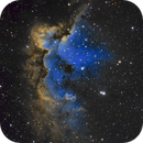 The Wizard Nebula,                                Peter