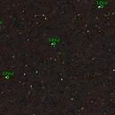 Dumbbell nebula nikon kit lens 18-55,                                The_Exoplanets_Channel