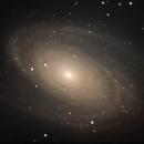 Bode's Galaxy - HaLRGB,                                Ray's Astrophotog...
