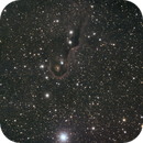 IC 1396,                                BobT