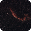 NGC 6992 Eastern Portion of the Veil,                                Gardner D. Gerry