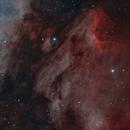 Pelican Nebula,                                Tamas Kriska