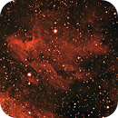 IC 5067  Pelican Nebula,                                Ricardo Barbosa