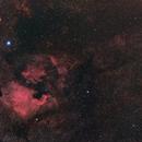 NGC7000,                                Bradisback