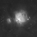 The Orion Nebula,                                Julien Lana