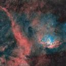 Sh2-101 and Cygnus X-1 Shockfront (rev. 3),                                pete_xl
