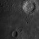 Copernicus & Reinhold,                                Pat Darmody