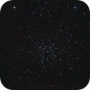 Starfish cluster,                                allanv28