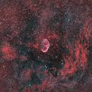 Crescent Nebula in Bi Color,                                Kiril Staridolski