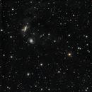 NGC7769-70-71 & IFN,                                Verio