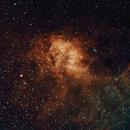 Sh2-132 (The Lion Nebula) in HOO narrowband,                                HaSeSky