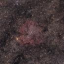 IC1396 @camera Lens 130 mm,                                Thibault