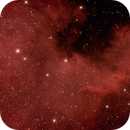 NGC 7000 - Nebulosa Nord America,                                Adriano Valvasori