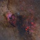 Northern Coalsack in Cygnus (4-Panel Mosaic),                                Die Launische Diva