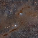 Barnard 7,                                Dennis Sprinkle