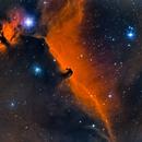 Horse Head Nebula,                                Beaner Franks