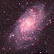 M 33 Triangulum Galaxy,                                Greg Ray