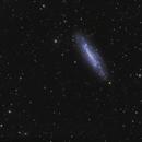 NGC 4236,                                Dave59