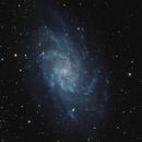 M33,                                John Thompson