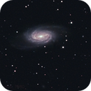 NGC 2903,                                Surfus_1980