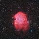 Ngc2174 - Monkey Head Nebula,                                regis83