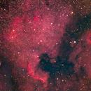 North American Nebula,                                Jared Holloway