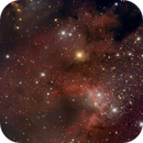 SH2-155 Cave Nebula (OSC  from Bortle 6),                                Torben van Hees