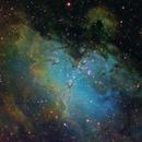 The Eagle Nebula - Narrowband,                                Don Walters
