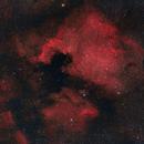 North America and Pelican Nebulae,                                Chad Andrist